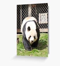 On Panda Patrol Greeting Card
