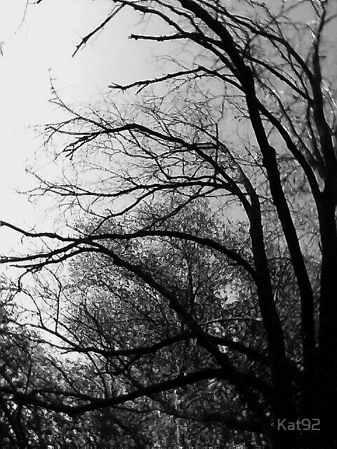 winter tree by Kat92