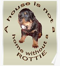 A House Is Not A Home Without A Rottie Poster