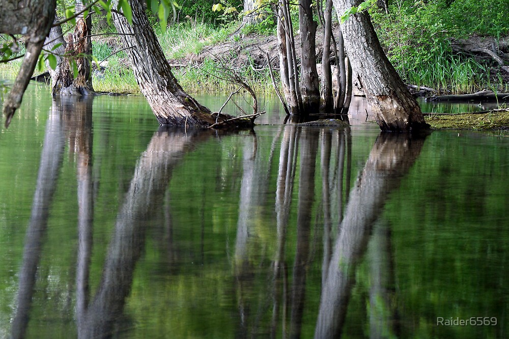 Canadice Reflections by Raider6569