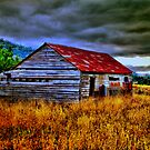 Old Hay Shed by Michael Rowley