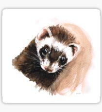 Ferret portrait Sticker