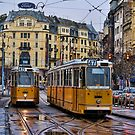Trams by sandgrouse