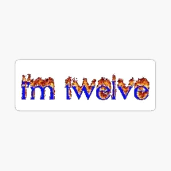 me me 12 boy Sticker