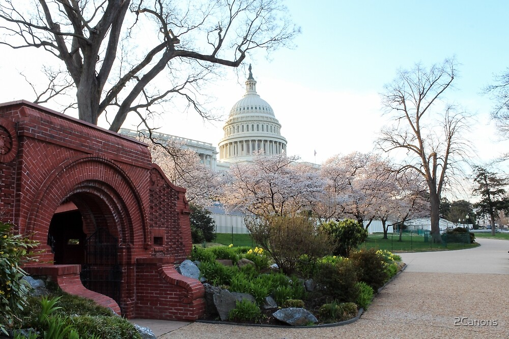 A side view of the U.S. Capitol by 2Canons