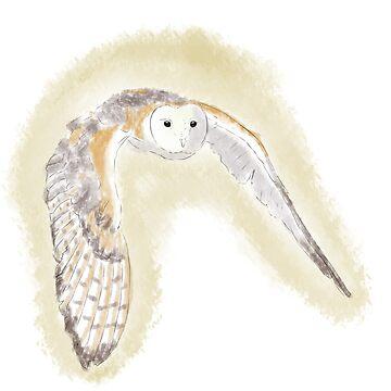 Barn owl by Farsketched