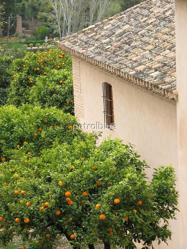 Granada, Spain - orange tree and house by petrolblue