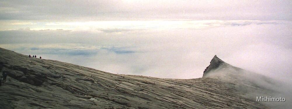 Near the summit of Kinabalu, Borneo Malaysia by Mishimoto