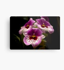 Orchids at the Conservatory Metal Print