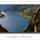 Sticking around  in Capri  by John44