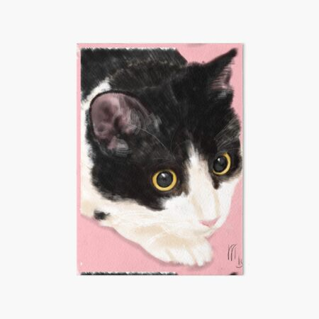 Black and White Cat on a Pink Background  Art Board Print