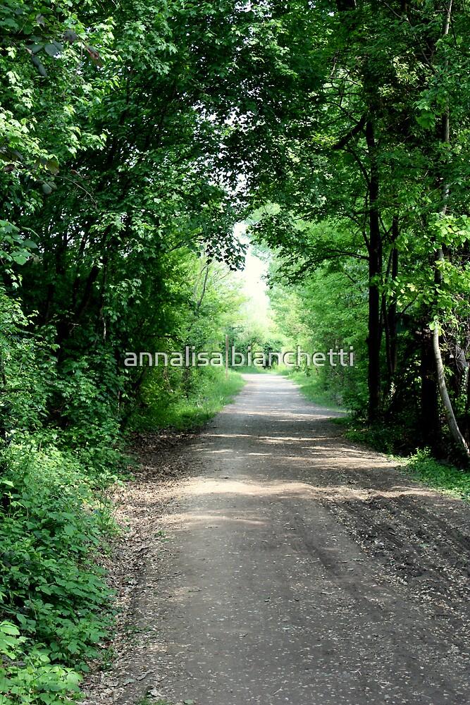 Country road by annalisa bianchetti
