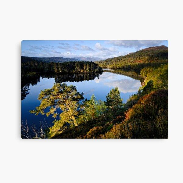 Glen Affric Sunrise Canvas Print
