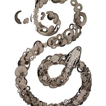 Snake by dcrownfield