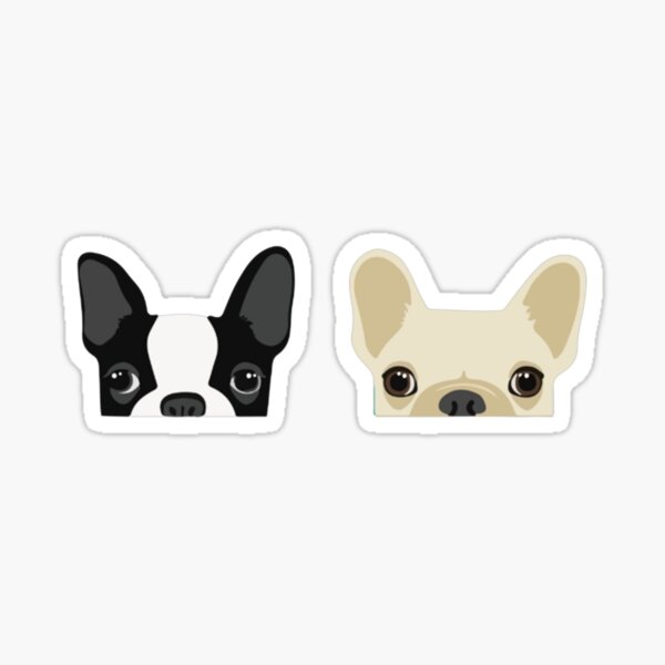 Boston Terrier And French Bulldog Sticker