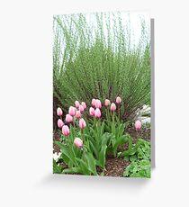 Beautiful Garden © Greeting Card