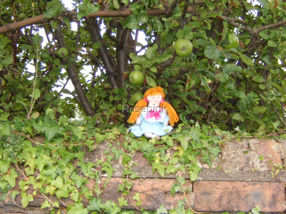 Flora siting on my garden wall by Rosepink