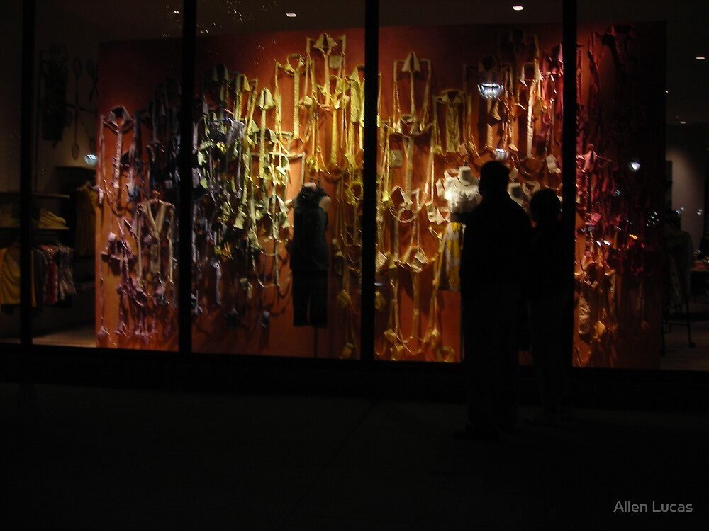 Window Shopping at Night by Allen Lucas