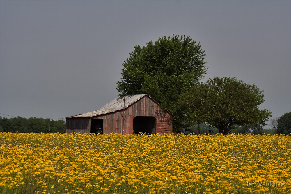 Bloomin' Barn by Jeff VanDyke