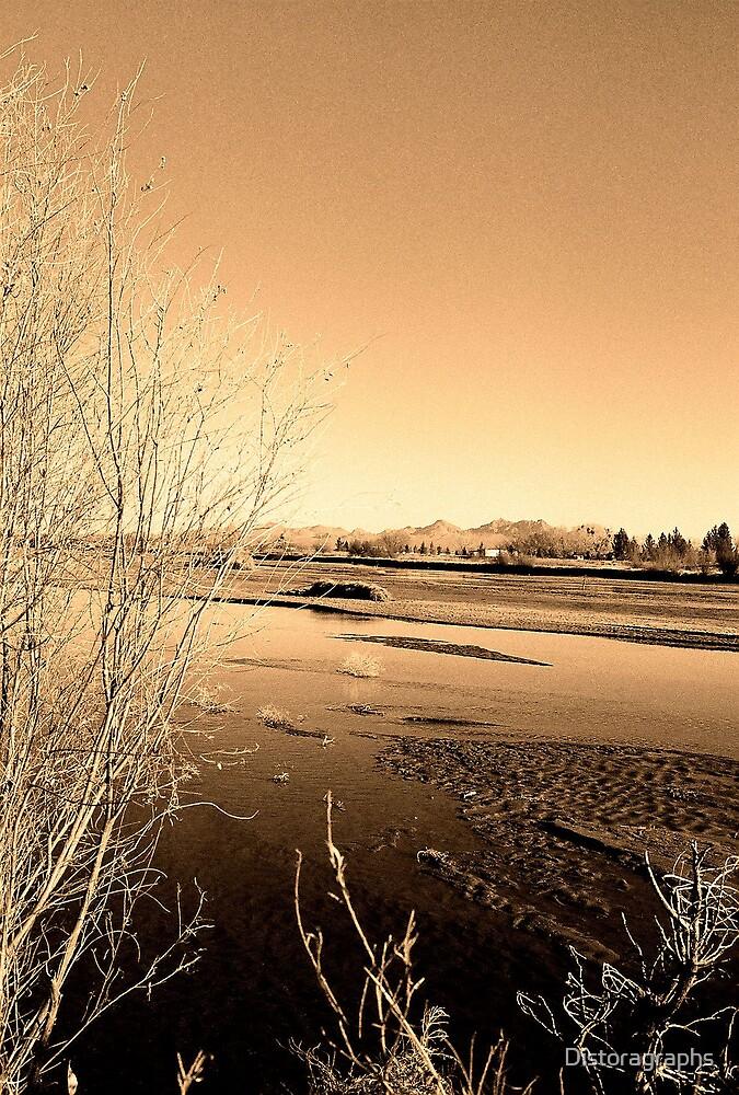 Winter Rio by Distoragraphs