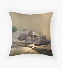 Baby turles Throw Pillow