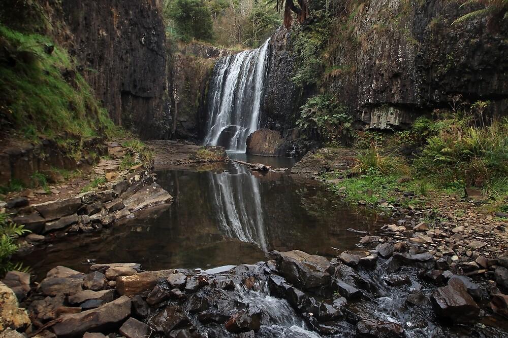 Guide Falls - near Burnie (Tasmania, Australia) by Gaylene Norton