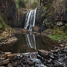 Guide Falls - near Burnie (Tasmania, Australia) by gaylene