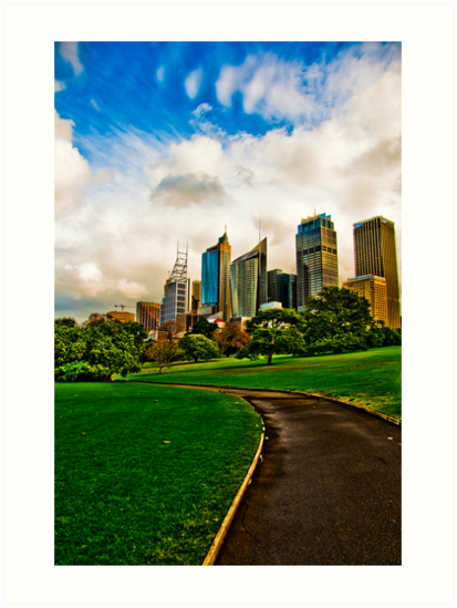 City views from the Park by David Petranker