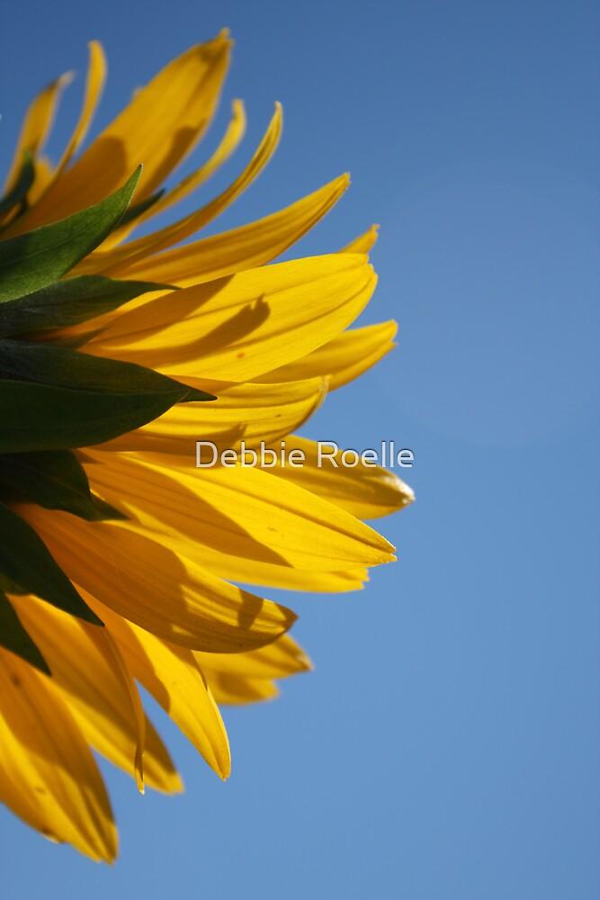 Sunnyside by Debbie Roelle