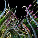 Southbank Arched Walkway by amko