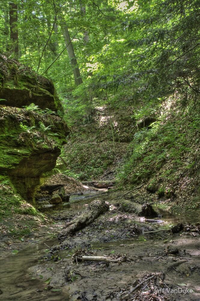 Trail #2 - Ravine by Jeff VanDyke