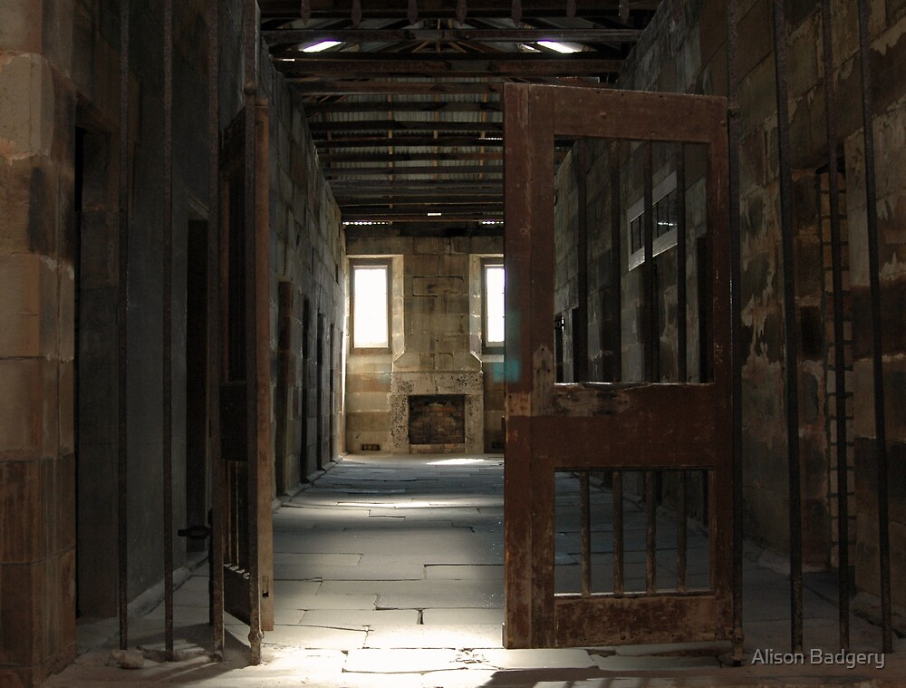 Prison Doors by Alison Badgery