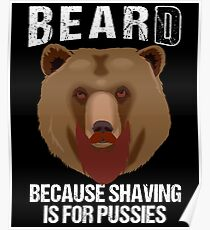 Bearded Bear Poster