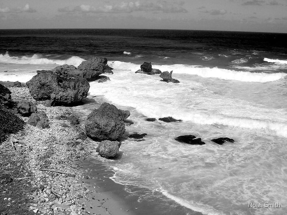 A Barbados Dream by Noah Smith