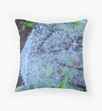 Spiders Web of Water Throw Pillow
