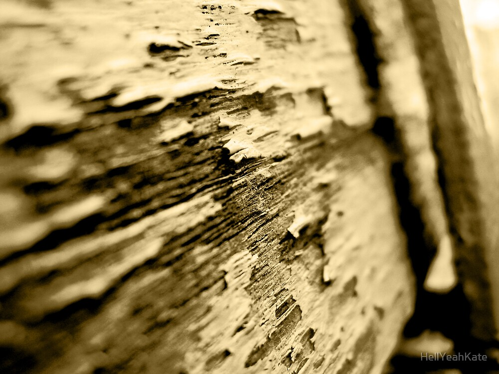 Old Wooden Seat by HellYeahKate
