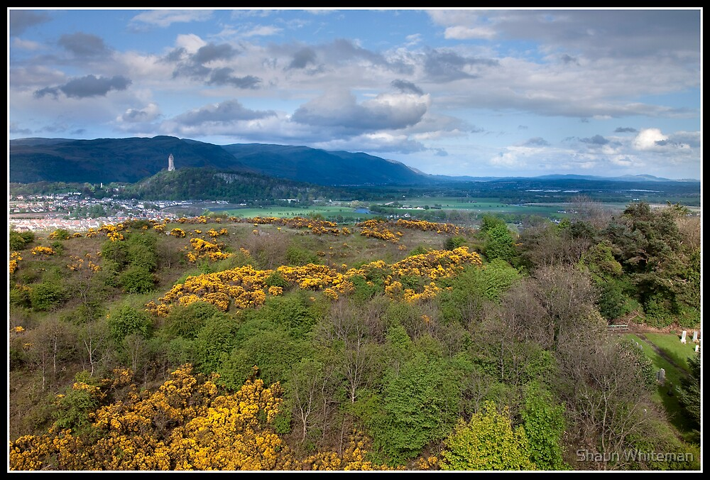 Views from Stirling Castle by Shaun Whiteman