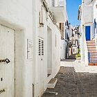 The Back Streets Of Elvissa by Steve Purnell