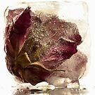Frozen beauty *3 by Inese