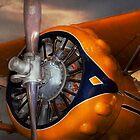 Plane - Prop - The Gulfhawk by Michael Savad