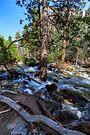 Bridal Veil Creek Full Tilt by photosbyflood