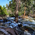 Bridal Veil Creek Full Tilt by photosbyflood