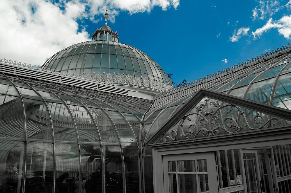 Kibble Palace - Glasgow Botanic Gardens by Gordon Hunt