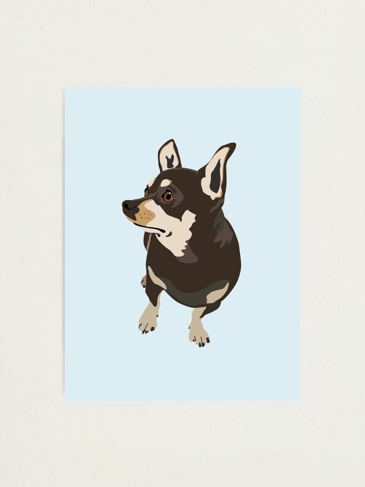 Alternate view of Hopeful Dog Photographic Print