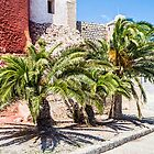Ibiza Palm Trees by Steve Purnell