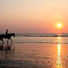 Riding at Sunset by Jo Nijenhuis