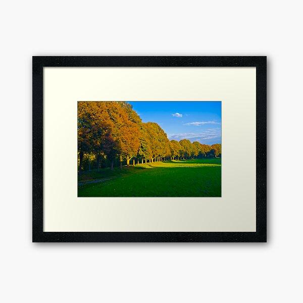 Sidelite Sunset Framed Art Print
