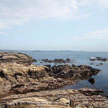 Arasaki Seashore by m48teh