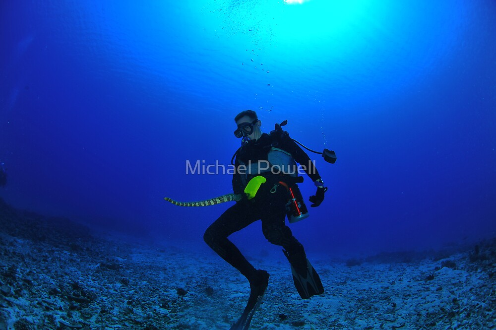 Is that a snake in your BCD or are you just happy to see me? by Michael Powell