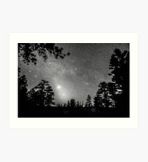 Forest Silhouettes Constellation Astronomy Gazing Art Print